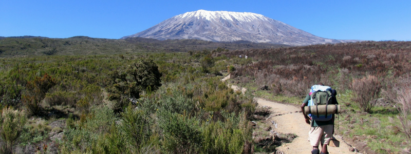 Trekking to the summit of Kilimanjaro