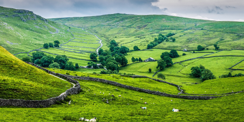 The rolling hills of the Yorkshire Dales