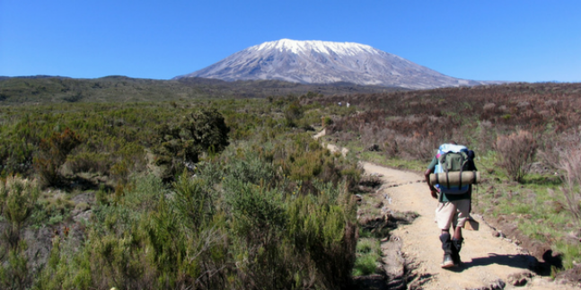 Primal Training Club Join Us To Conquer Kilimanjaro!