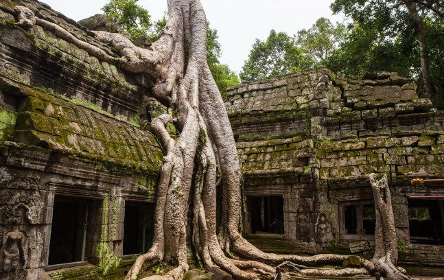 What to do in Vietnam and Cambodia